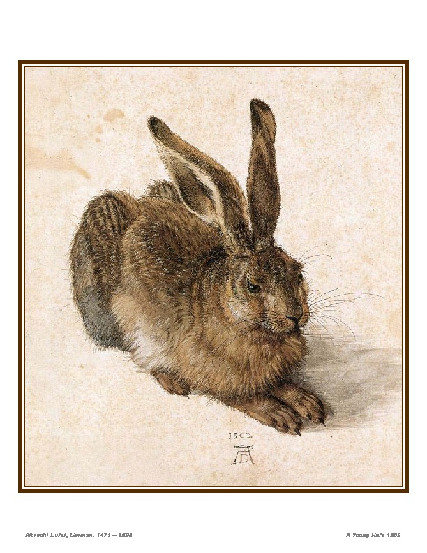 young hare.pdf