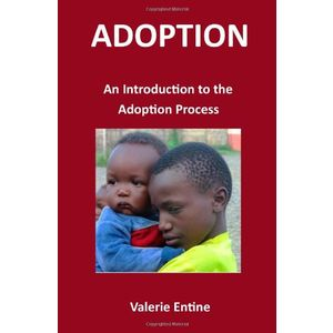 Adoption: An Introduction to the Adoption Process