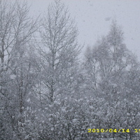 Photo taken in April 2010 from my front porch.