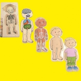 Hape Beleduc Your Body Wooden