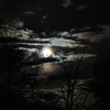 amlikam's photos in How do you celebrate the Harvest Moon?