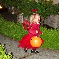 Home Made Lady Bug Costume.  Lilah really enjoyed trick or treating this year.  Almost as much as her little sister.
