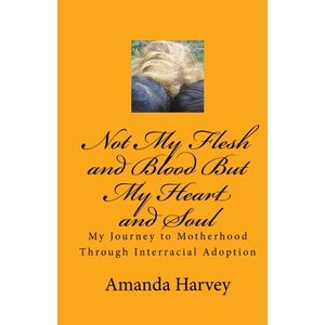 Not My Flesh and Blood But My Heart and Soul: My Journey to Motherhood Through Interracial Adoption