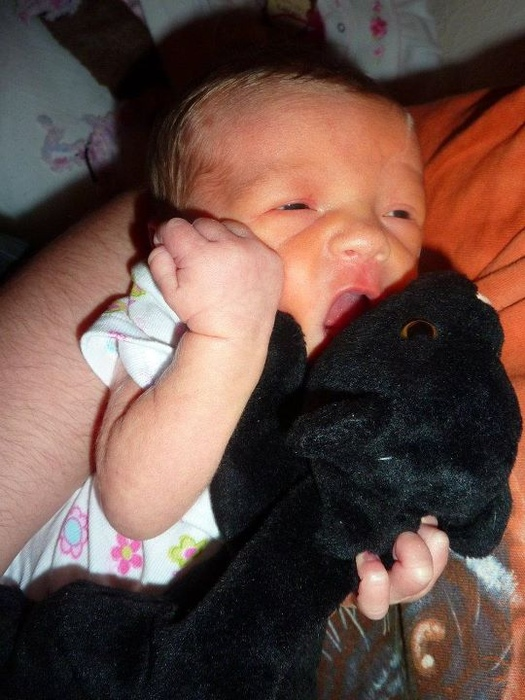 Ari eating her panther-cat baby stuffie (my husband is infatuated with panthers and has a panther stuffed animal and I have a black cat stuffed animal, this one looks like a cross between the two :D )
