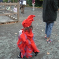 Little Red Bird costume.jpg
