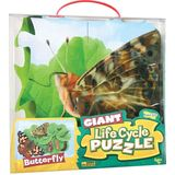 Insect Lore Butterfly Giant Life Cycle Puzzle