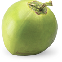 buko.png