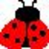 ladybugchild77 profile picture