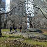 Dd and nephews in central park 2/12