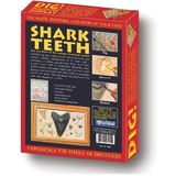 DIG! &amp; DISCOVER: Shark Teeth