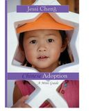 Chinese Adoption: A Mini Guide