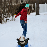 Sledding-Credit-Bob2-web.jpg
