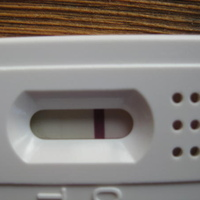 8 DPO