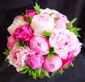 PinkPeony profile picture