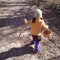 DD1, on a nature walk this past fall.