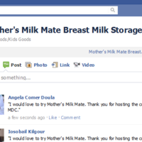 Mother's Milk Mate Breast Milk Storage System 2011-05-16 15-58-43.png