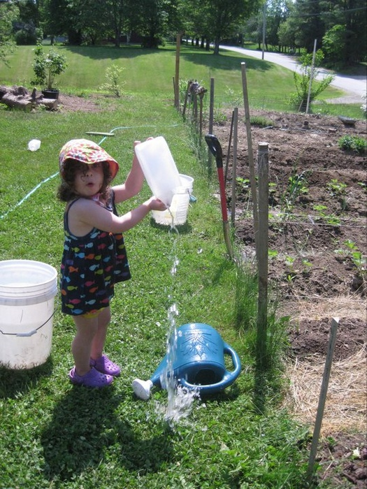 first year helping in the garden!