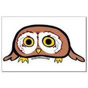 sageowl profile picture