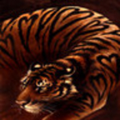 Tigerchild profile picture