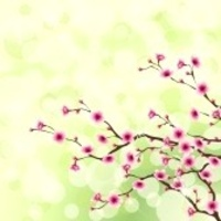 8668250-blossoming-cherry-tree-branches-against-a-green-background-graphics-are-grouped-and-in-several-layer.jpg