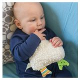 Nova Natural Funky Chicken Rattle