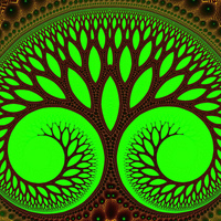 tree-2-wallpaper.jpg