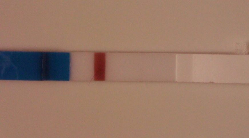 9DPO, is it a line or not?